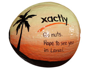 Painted coconuts logo branded for cool trophies and unusual incentive gifts
