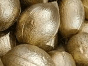 Solid Color Hollow Coconuts for Holiday Ornaments and Mardi Gras Zulu coconut