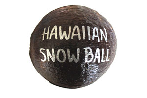 Mail a Hawaiian Snowball