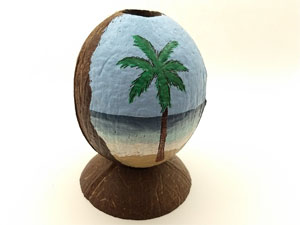 Beach themed table top coconut can also be hung.