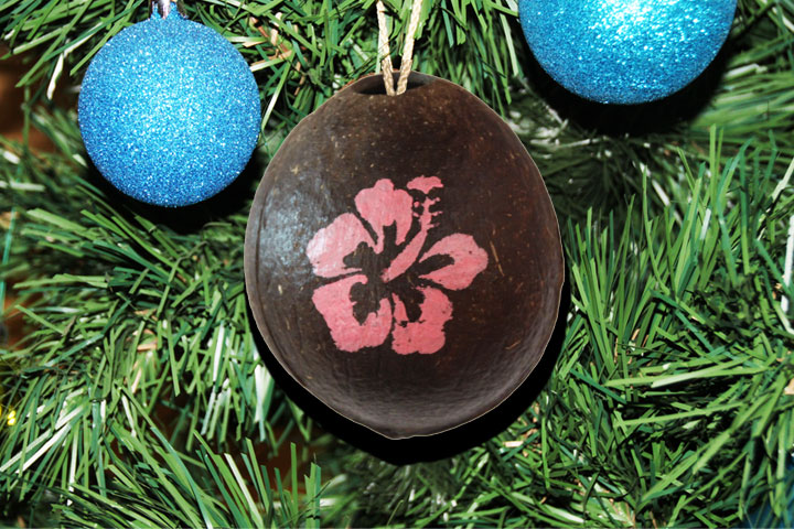 Personalized hand painted coconuts for holiday gifts