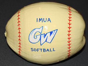 Softball painted coconut