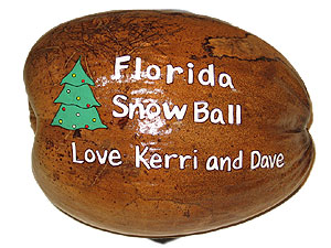 Florida Snowball painted coconut