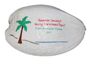 Hawaiian Snowball Painted Coconut