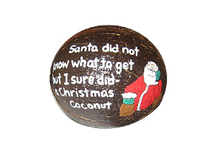Happy Holidays Personalized Painted Coconut