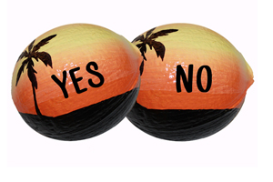 One side says yes, one side says no. Make sure to order a two-sided design