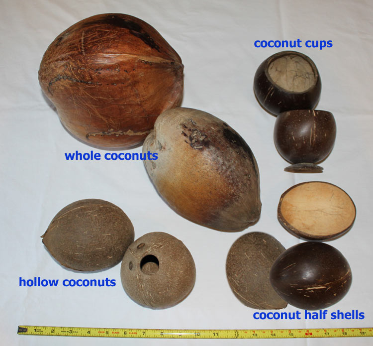 Unpainted Coconut Products and Size Specifications