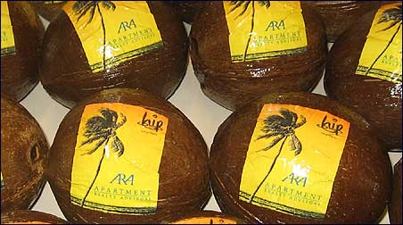 Unique promotional items - coconuts with label service