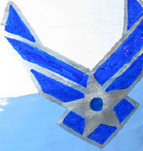 Custom Painted Air Force logo