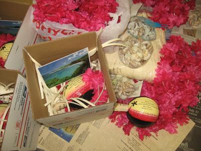 Coconut Destination Wedding Invitations Package