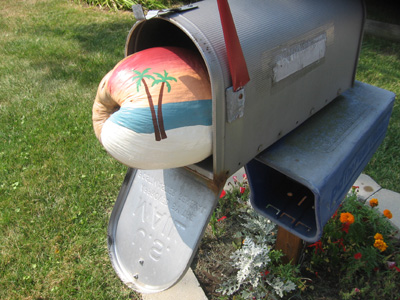 Coconut in the mail