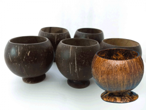 Coconut Cup Unpainted 5-pack - Product Image
