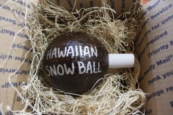 Painted Hawaiian Snowball Coconut - Product Image