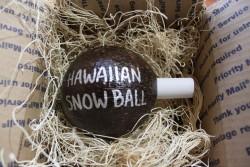 Painted Hawaiian Snowball Coconut - Product Image